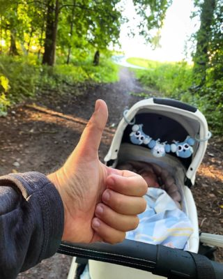 """Morgonpromenad = check! ✅ . ÄNTLIGEN! Nu har jag återhämtat mig från ryggskottet jag fick förra veckan och kan återgå till mina vanliga rutiner med morgonpromenad varje morgon tillsammans med Oliver. 🥰 . Under återhämtningsperioden från ryggskottet har jag inte kunnat göra det då jag inte fått ut barnvagnen när jag varit ensam hemma då den måste nedför en trappa varje gång vi ska ut = ajaj för ryggskottet! 😂 Annars är det väldigt bra att försöka röra på sig när man har ryggskott, så jag har fått försöka röra på mig inomhus istället under dagarna. 👍🏻 . Idag gick jag hela 5 km på dagens morgonpromenad som tog 1h, det kändes riktigt bra! Nu har jag totalt gått 178 km av de 300km jag satt upp som delmål, dvs nästan två tredjedelar avverkat med andra ord! 😃👌🏻👍🏻 . Om en vecka ska jag dessutom till en fysioterapeut som är specialiserad på bäckenbotten för rådgivning och kontroll till att ev förhoppningsvis kunna börja """"gågga"""" snart! 🥰 Håll tummarna för mig att det går bra! 🙈 . #löpning #löpningeftergraviditet #träningeftergraviditet #morgonpromenad #barnvagnspromenad #mammalivet #karlstad"""